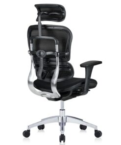 ортопедичне комп'ютерне крісло Ergohuman