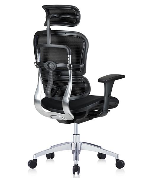 ортопедическое компьютерное кресло Ergohuman