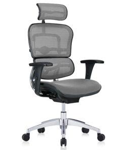ортопедичне крісло Ergohuman