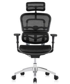 кресло Ergohuman