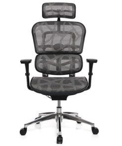 Кресло ERGOHUMAN PROJECT ZB2
