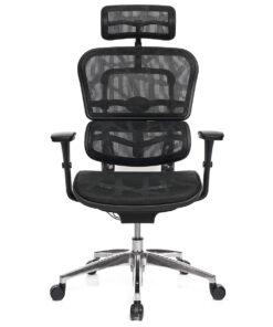 Эргономичное Кресло для Компьютера ERGOHUMAN