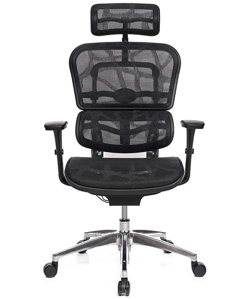 Ергономічне Крісло для Комп'ютера ERGOHUMAN