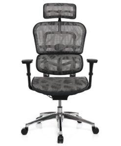Кресло ERGOHUMAN PROJECT ZB2 Grey